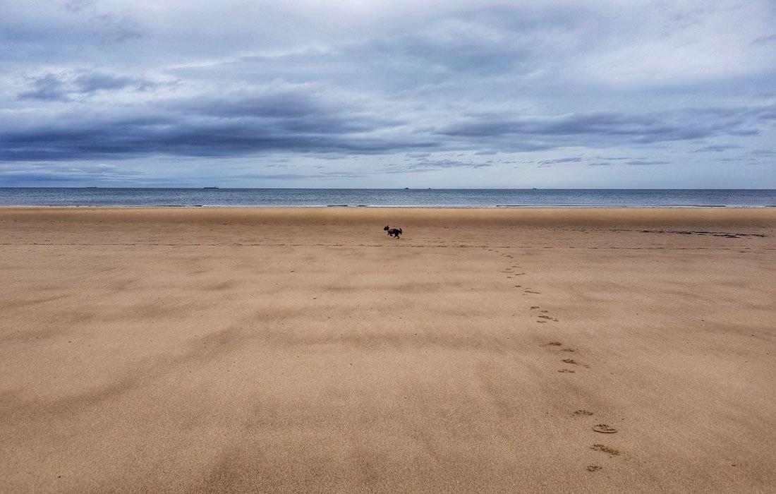crimdon-beach-6 Walks Along Crimdon Beach, Durham