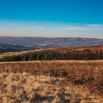 Walks On Crompton Moor (High Moor), Oldham