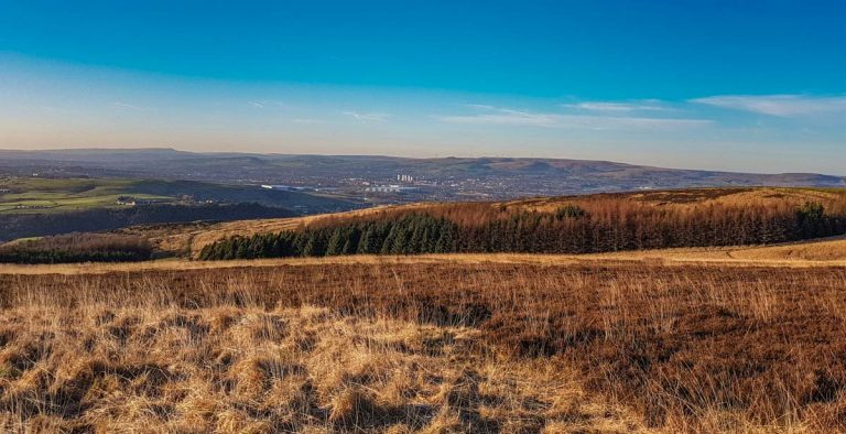 Walks On Crompton Moor (High Moor), Oldham