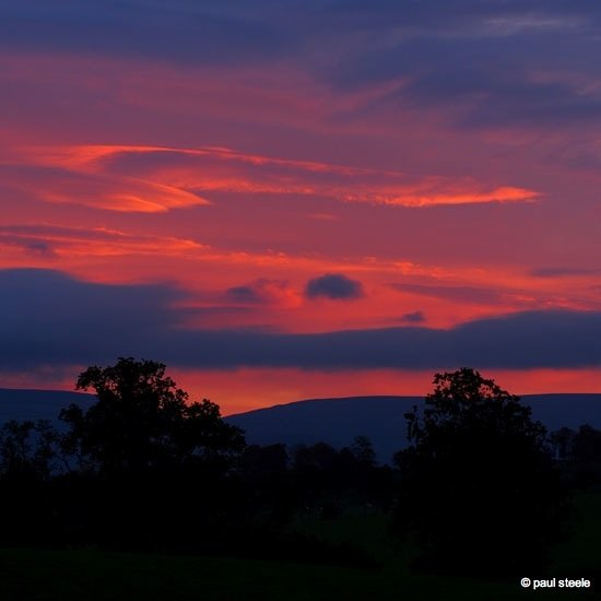 dawn-eden Sunrise variety of the Eden Valley