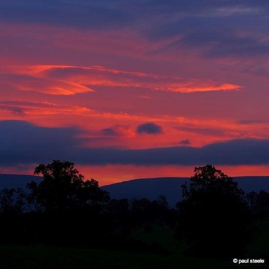 dawn-eden Sunrise variety of the Eden Valley