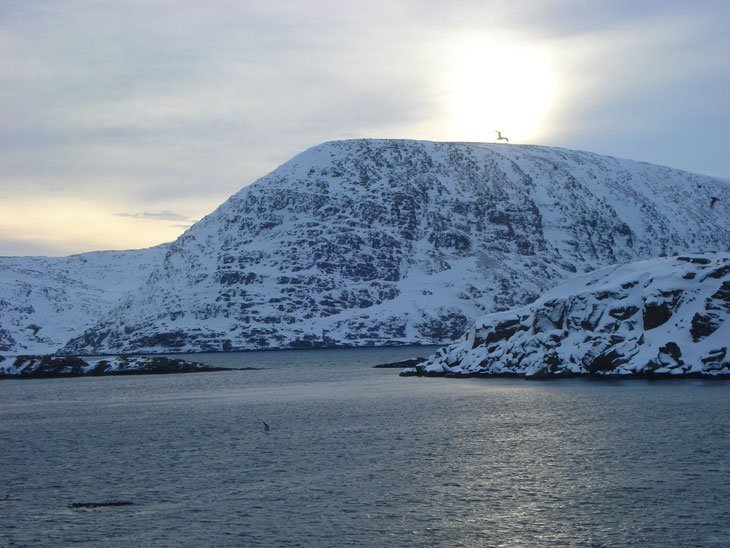 Norway – By boat Around The North Cape