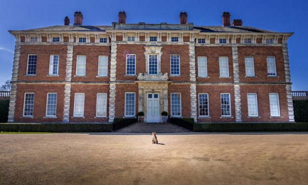 A Doggy Day at Beningbrough Hall and Gardens