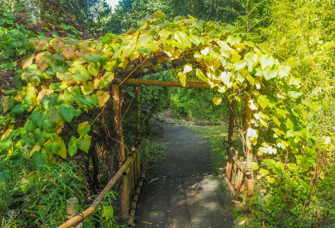 durham-botanical-gardens-10 Durham - The Botanic Garden