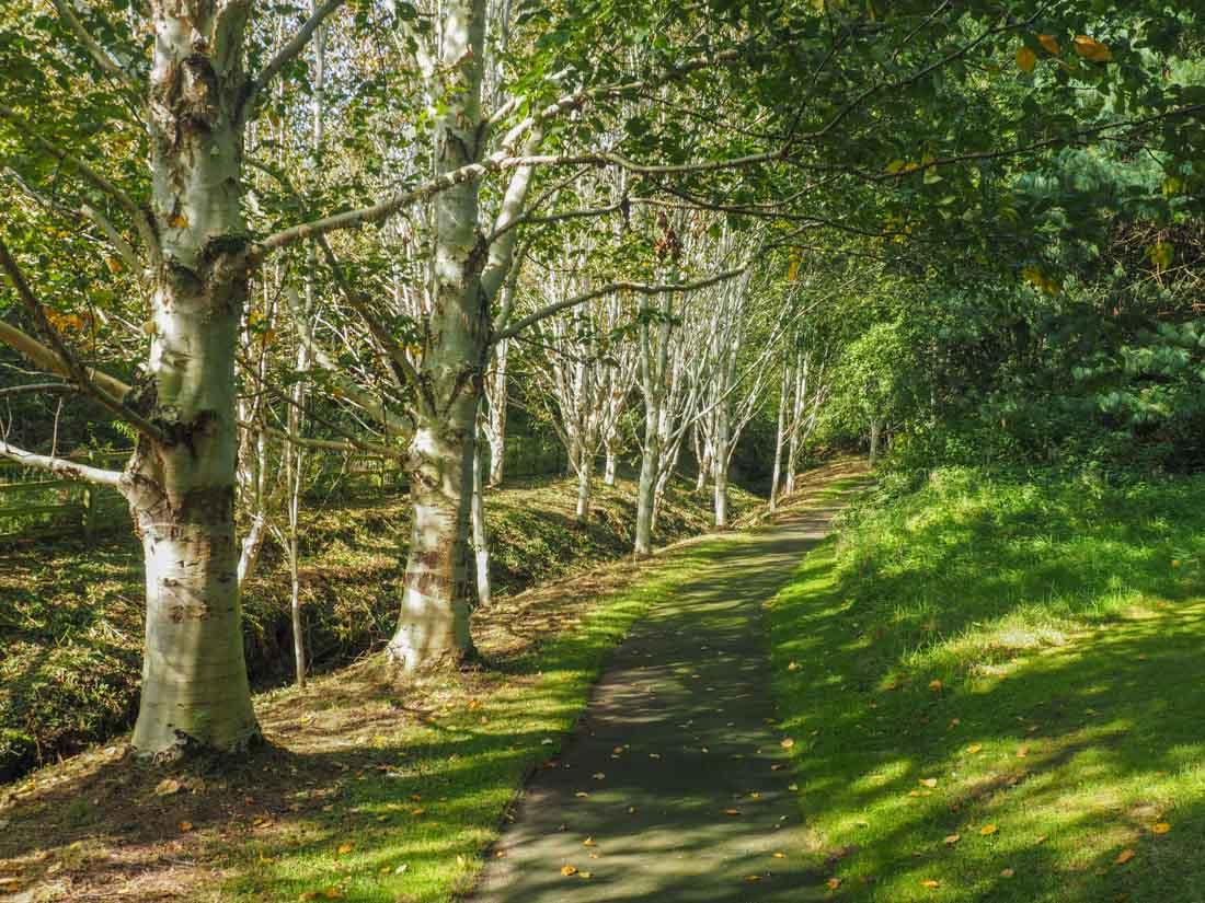 durham-botanical-gardens-11 Durham - The Botanic Garden