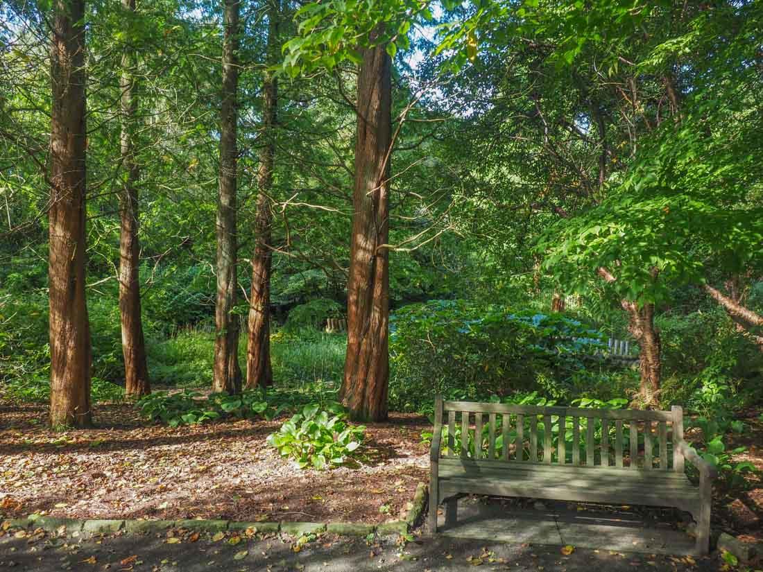 durham-botanical-gardens-4 Durham - The Botanic Garden
