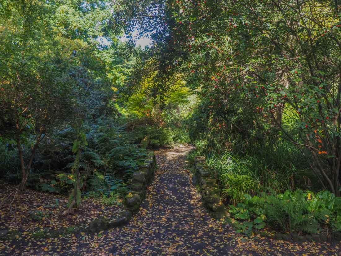durham-botanical-gardens-5 Durham - The Botanic Garden