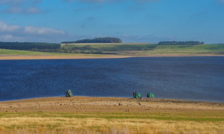 Durham Dales: An e-Bike Tour Around Derwent Reservoir