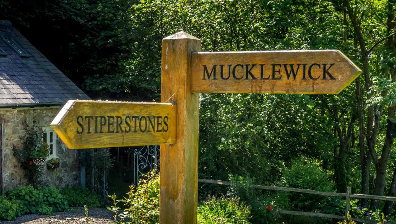 hf-walk-6062548 Mitchell's Fold Stone Circle To The Stiperstones - A Shropshire Walk