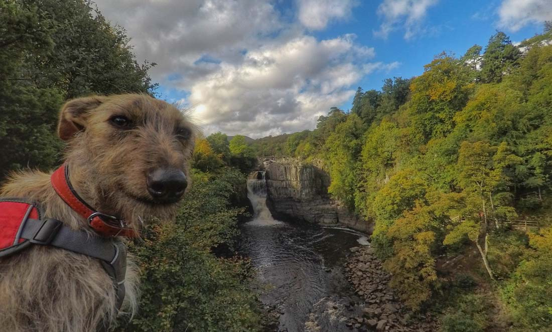 Low and High Force Walk - Durham Dales 1