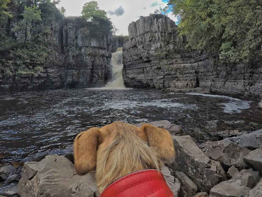 high-force-low-force-7 Low and High Force Walk - Durham Dales