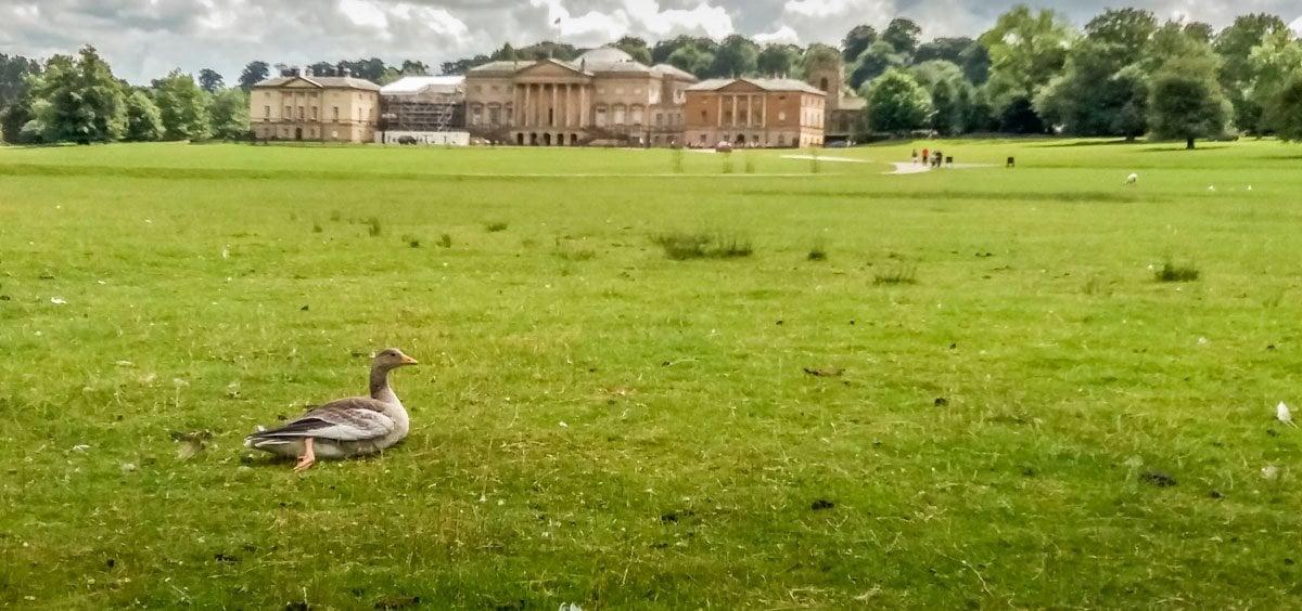 kedleston-11 Kedleston Hall – Parkland Walks and Lakeside Views