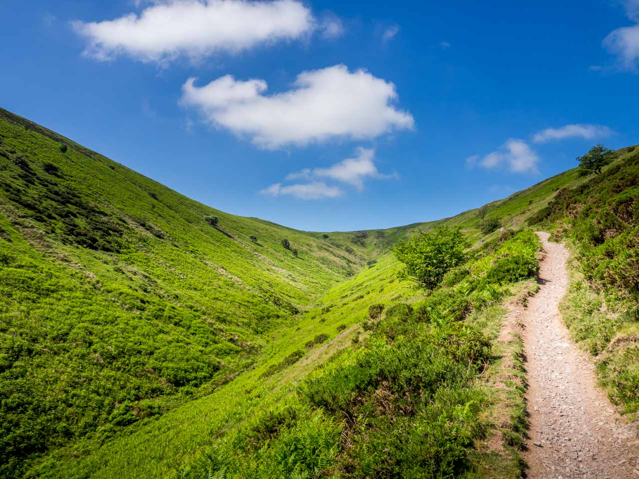 long-mynd-3-of-11 Walk The Long Mynd Valleys To Pole Bank - Shropshire