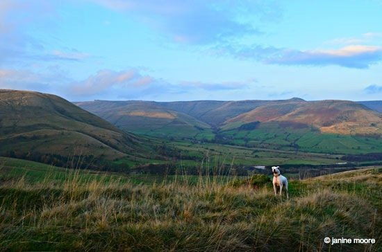 max-at-colborne-moor Dark Hills and Green Dales – An Edale walk