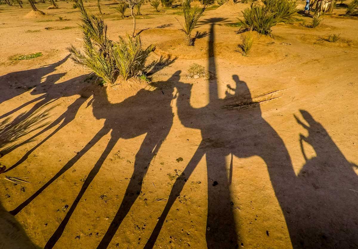morocco-10 Marrakech by Balloon and Camel