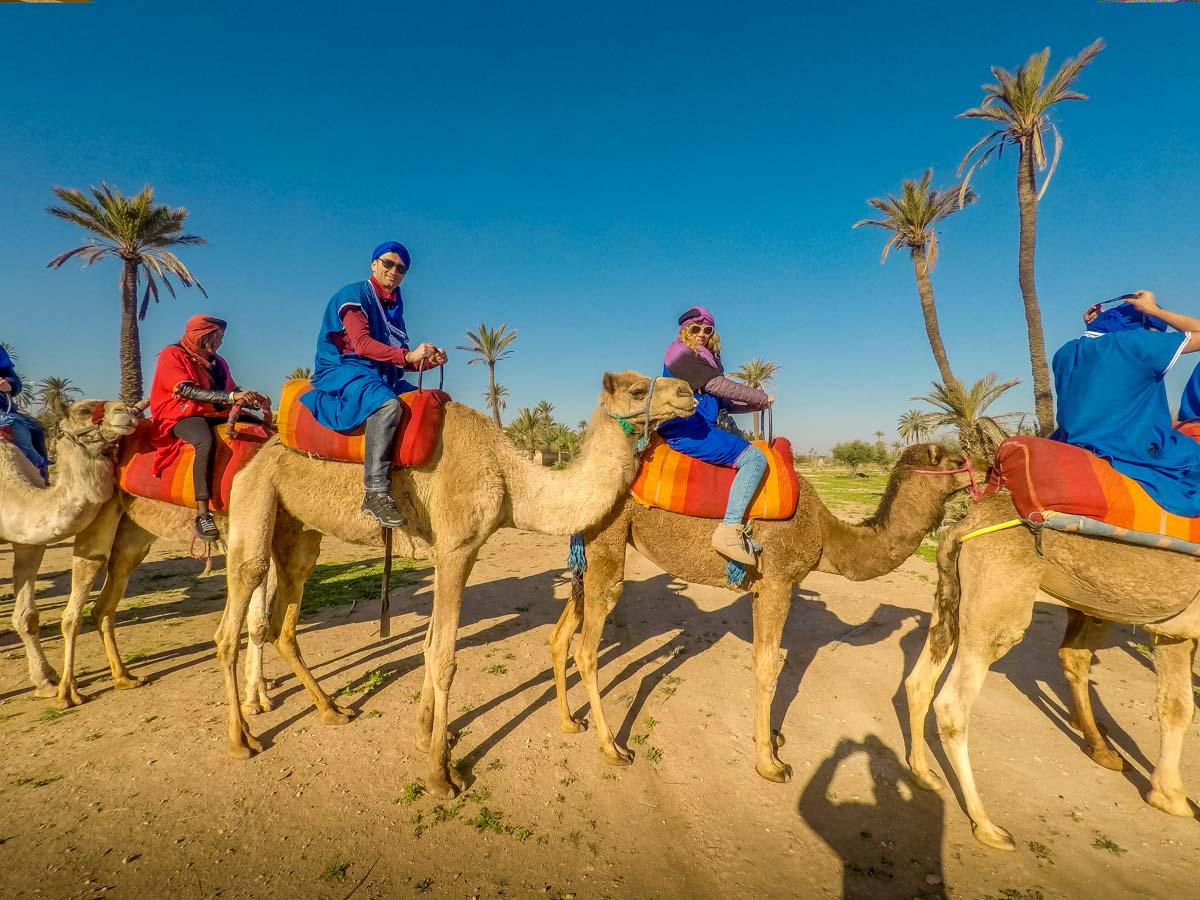 Marrakech by Balloon and Camel