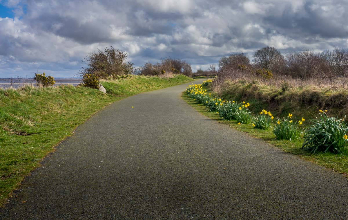 north-wales-2 Dee Estuary Walk - Ffynnongroyw to Flint