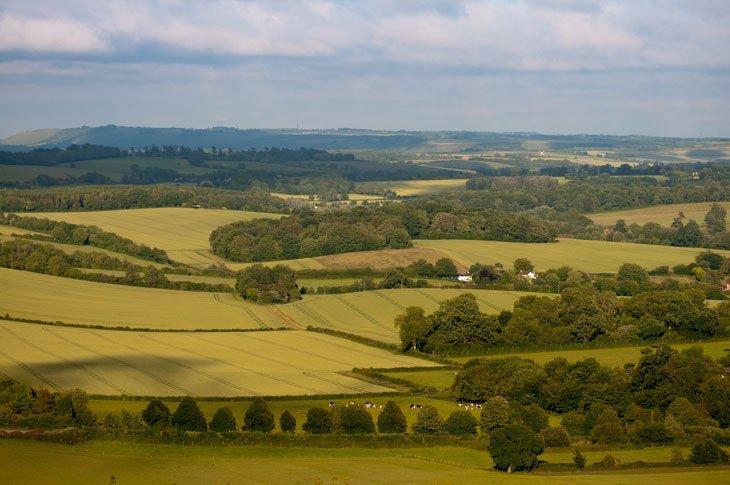 Beautiful Britain - Pastures Green 5