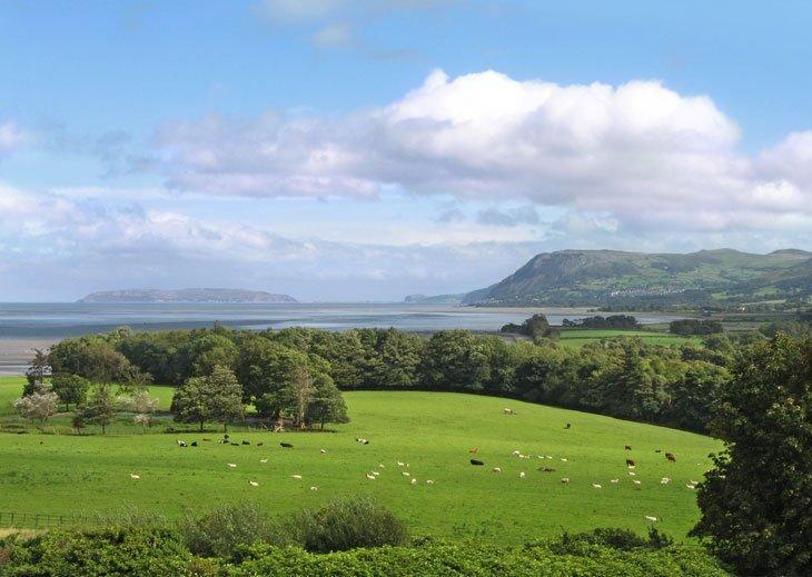 Beautiful Britain - Pastures Green 8