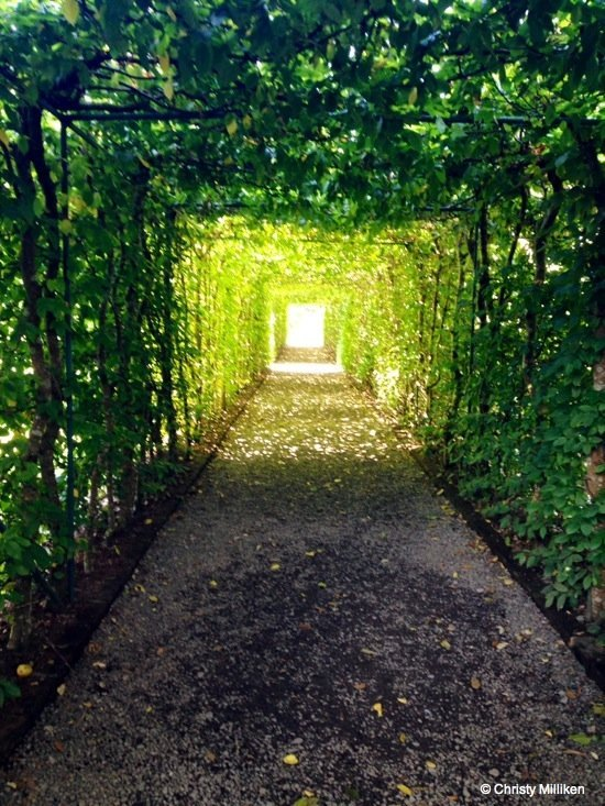 photo-5-castle Ashford Castle, Ireland – Beyond the Castle Walls