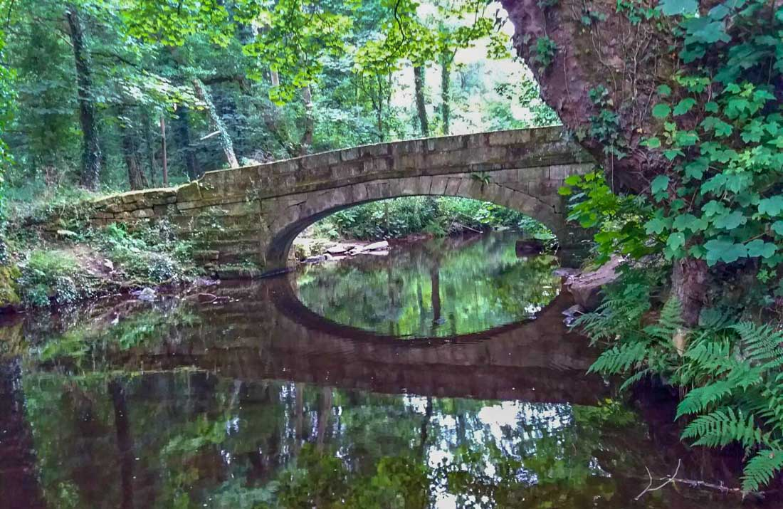 rivelin-valley-3 Meandering along the River Rivelin, South Yorkshire
