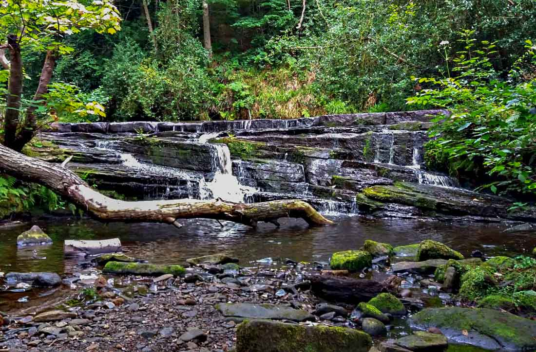 rivelin-valley-5 Meandering along the River Rivelin, South Yorkshire
