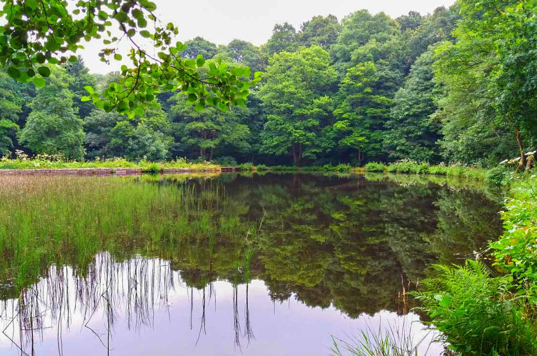 rivelin-valley-9 Meandering along the River Rivelin, South Yorkshire