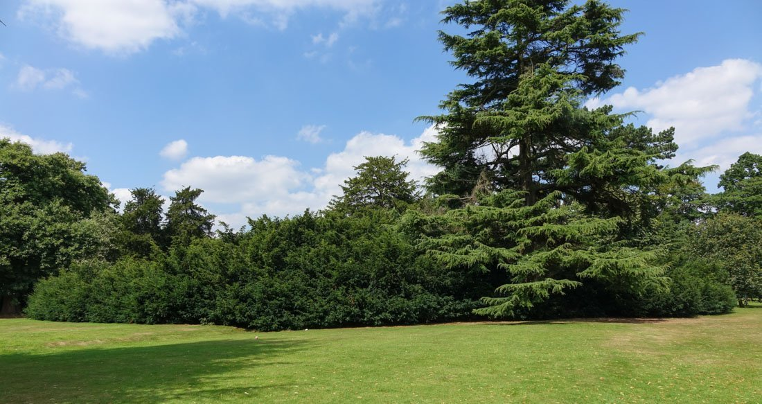 shugborough-gardens-13 Shugborough Hall - Walk The Gardens and Monuments