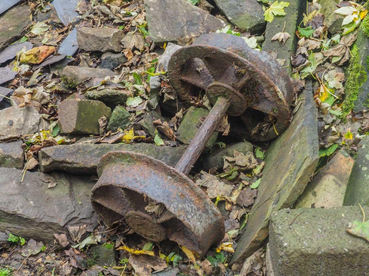 slitt-wood-walk-12 Durham Dales: A Walk Through Slitt Wood