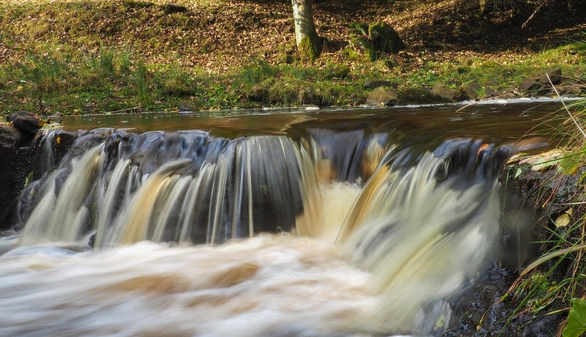 slitt-wood-walk-2 Durham Dales: A Walk Through Slitt Wood