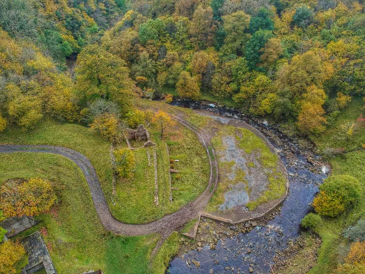 slitt-wood-walk-8 Durham Dales: A Walk Through Slitt Wood