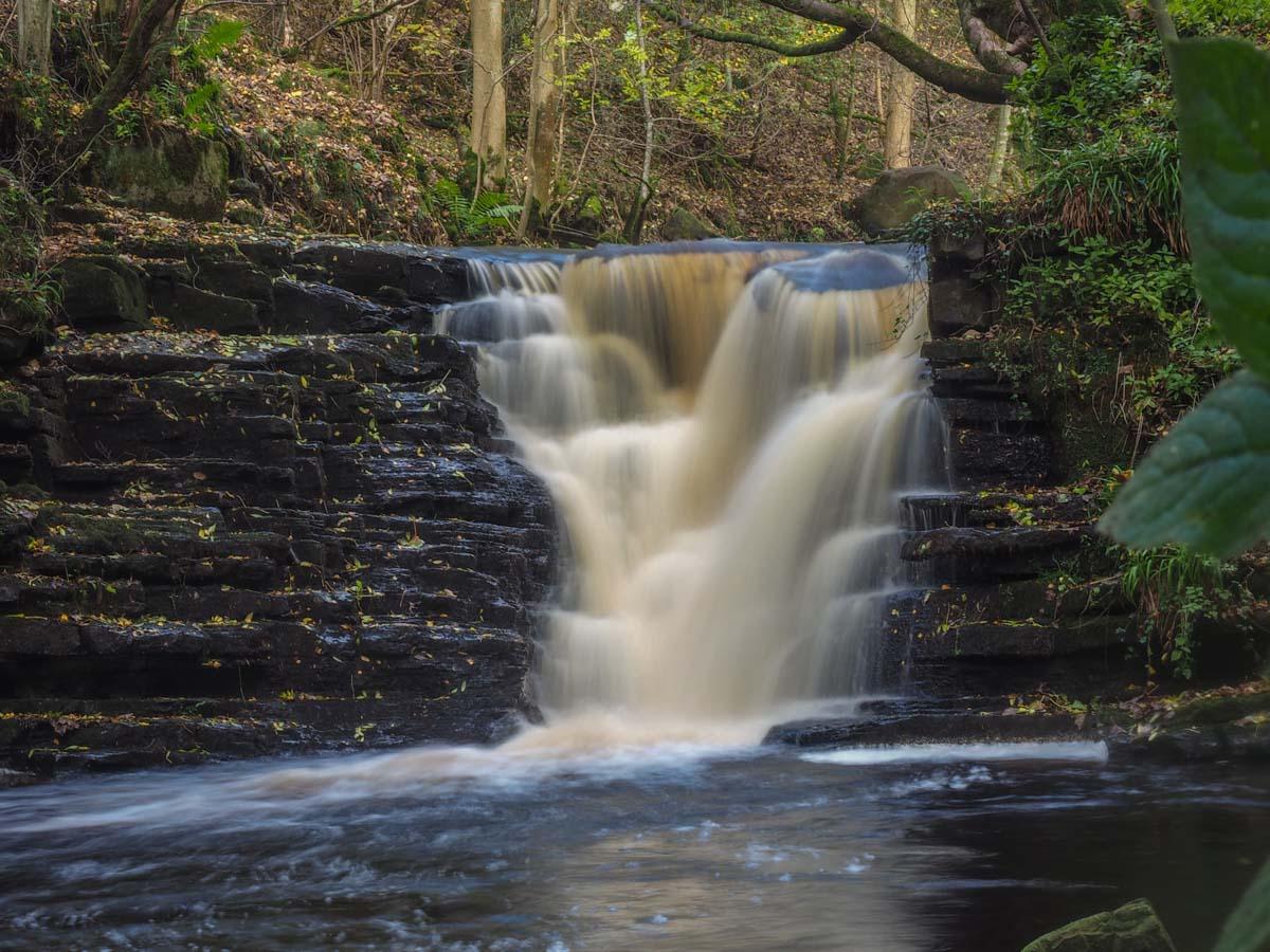 slitt-wood-walk Durham Dales: A Walk Through Slitt Wood