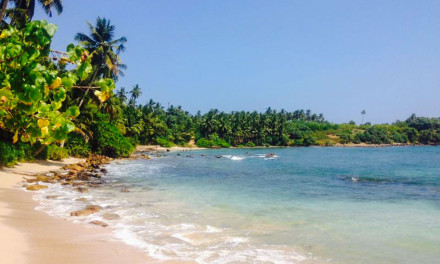 Sri Lankan Bliss
