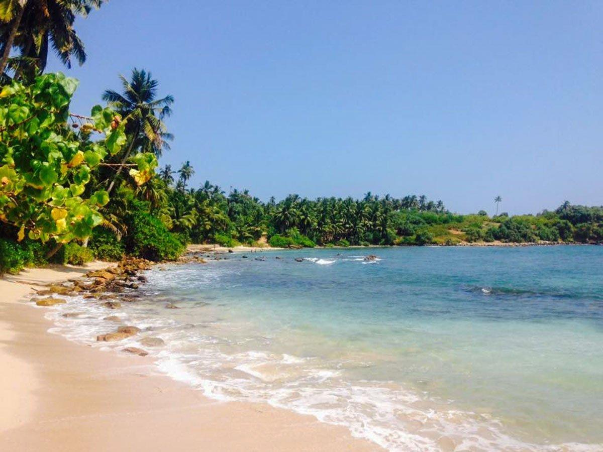 Sri Lankan Bliss 1