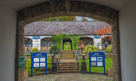 Durham Dales Centre, Stanhope and the Fossil Tree