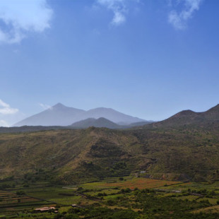Tenerife – Looking forward and Animals in the Sun
