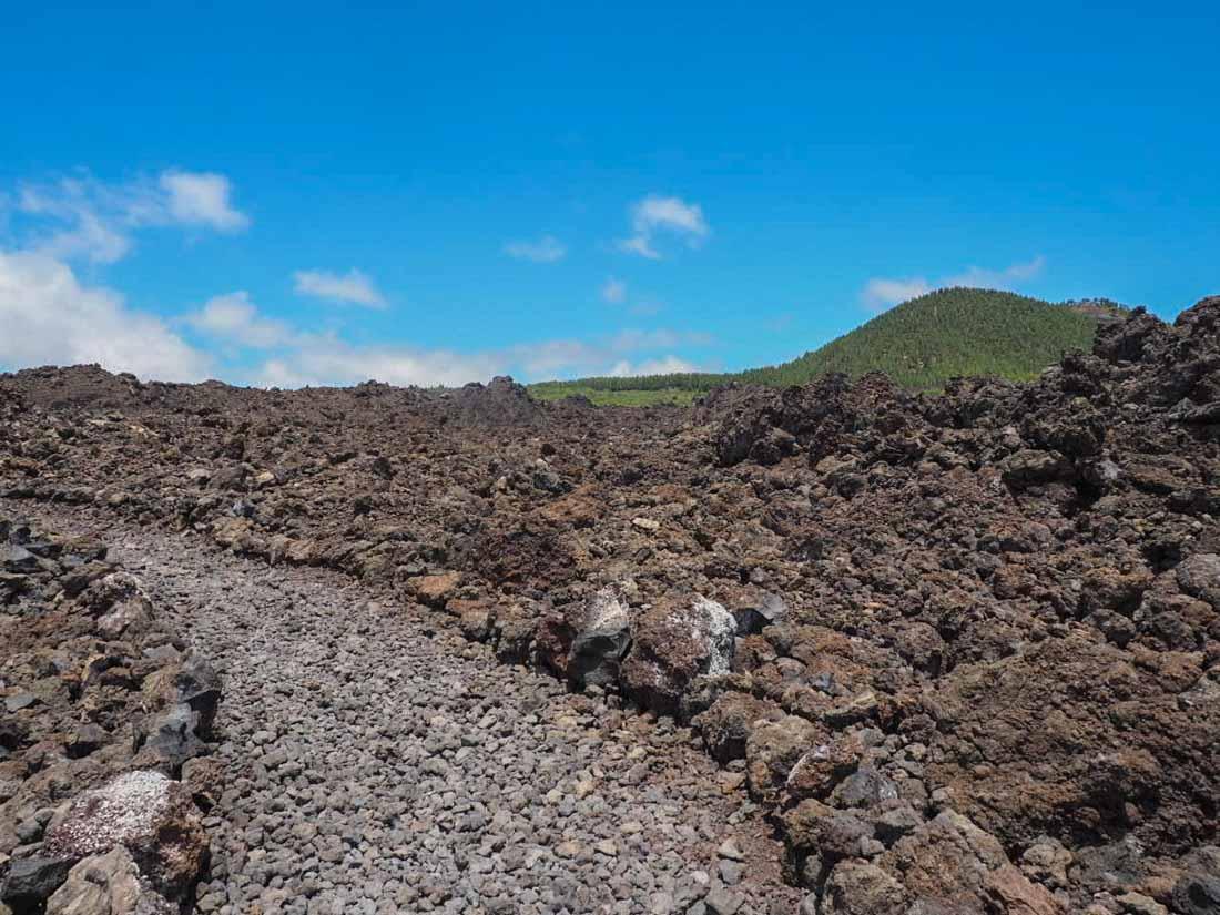 tenerife-hike-3-10 Walking Tenerife - Across the Volcanic Ash of Chinyero Volcano