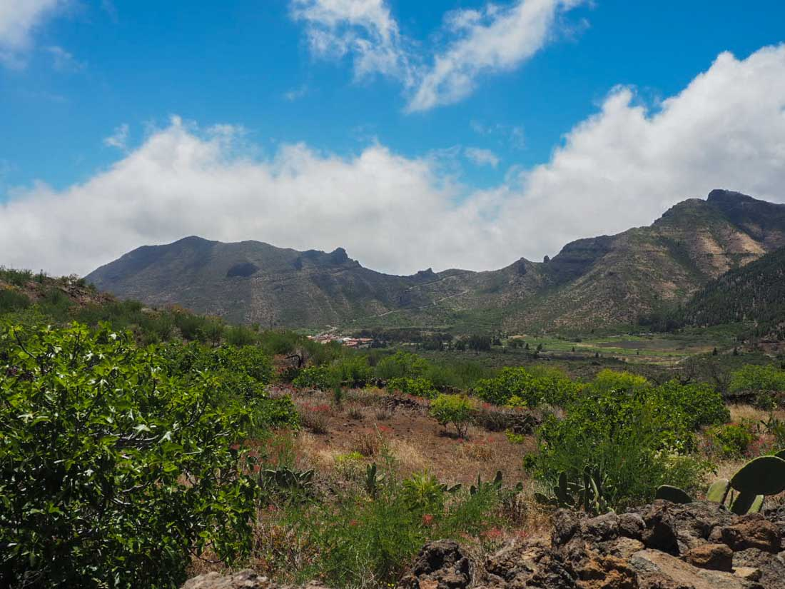 tenerife-hike-3-14 Walking Tenerife - Across the Volcanic Ash of Chinyero Volcano