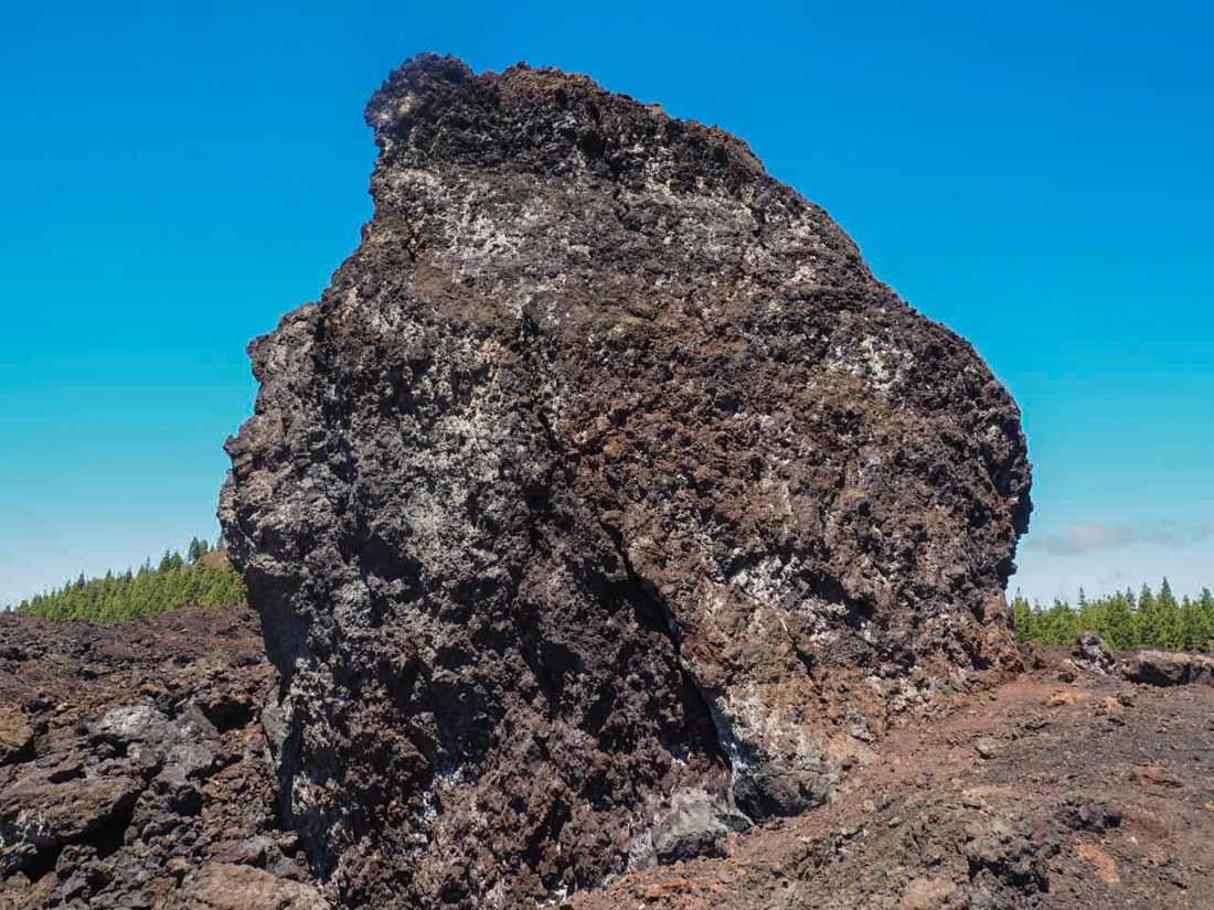 tenerife-hike-3-3 Walking Tenerife - Across the Volcanic Ash of Chinyero Volcano