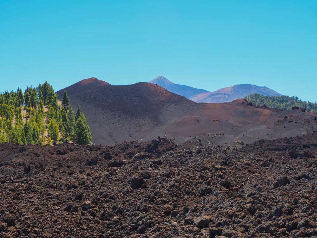 Walking Tenerife - Across the Volcanic Ash of Chinyero Volcano