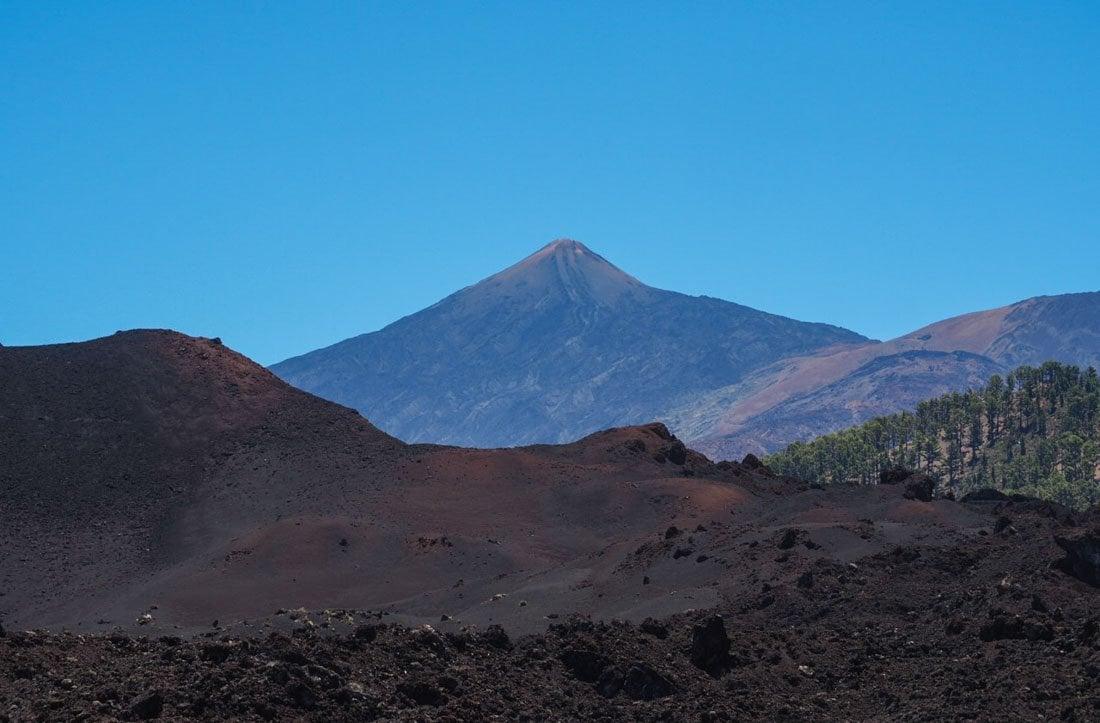 tenerife-hike-3-6 Walking Tenerife - Across the Volcanic Ash of Chinyero Volcano