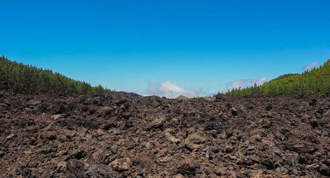tenerife-hike-3-7 Walking Tenerife - Across the Volcanic Ash of Chinyero Volcano