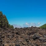 Walking Tenerife – Across the Volcanic Ash of Chinyero Volcano