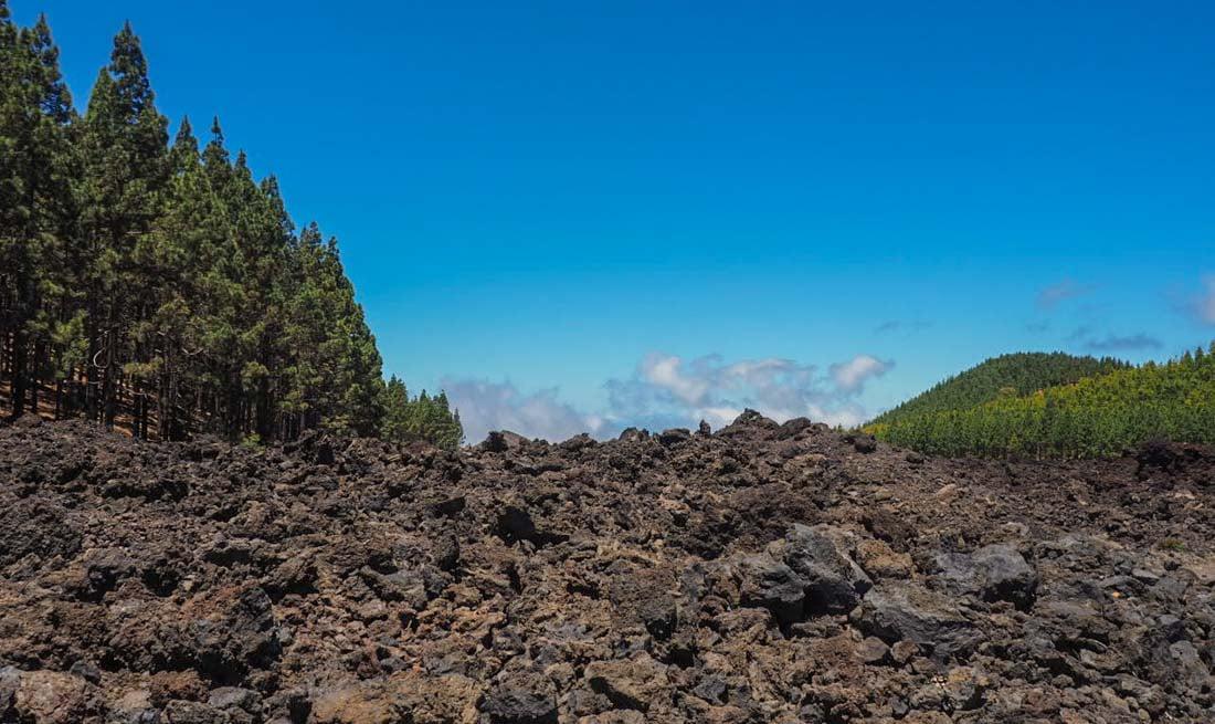 Walking Tenerife - Across the Volcanic Ash of Chinyero Volcano 1