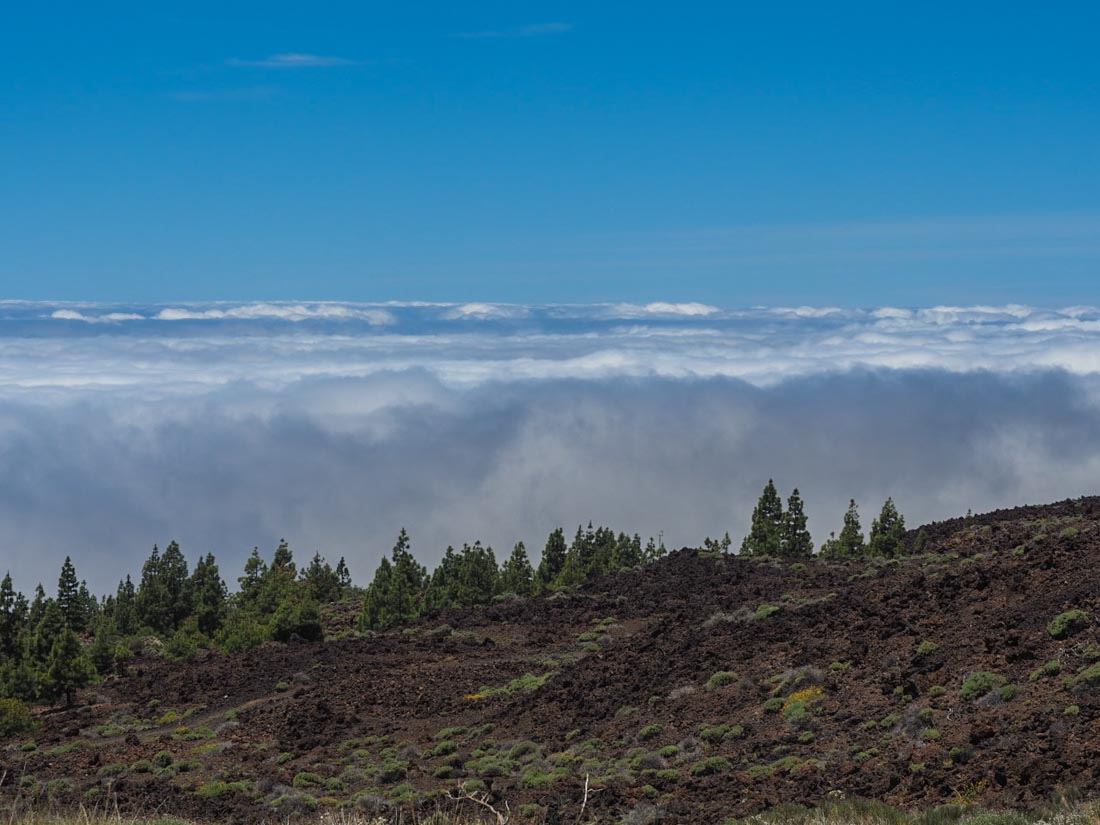 tenerife-mountains-4 Walking Tenerife - Above The Clouds Amongst Ancient Rocks
