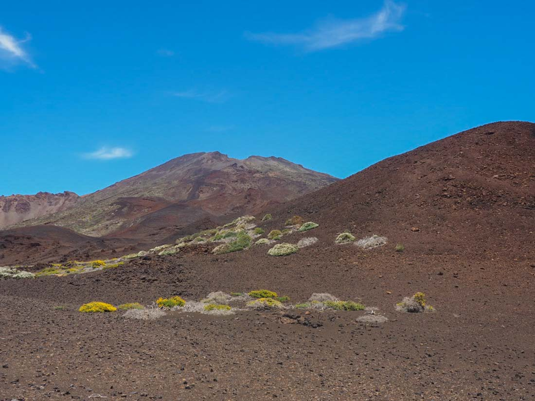 tenerife-mountains-5 Walking Tenerife - Above The Clouds Amongst Ancient Rocks
