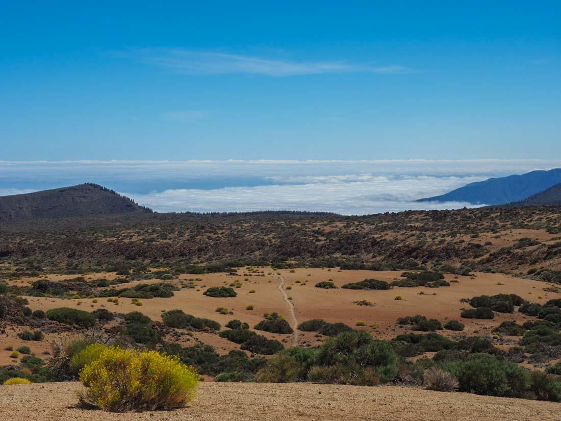 tenerife-walk-2-7 Walking Tenerife - Montaña Blanca to El Portillo