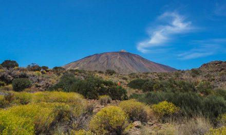 Walking Tenerife – Montaña Blanca to El Portillo