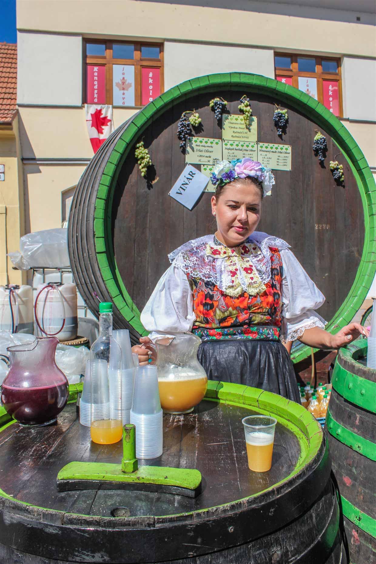 trvina-2-slovakia Slovakia – Trnava, a Taste of Tradition