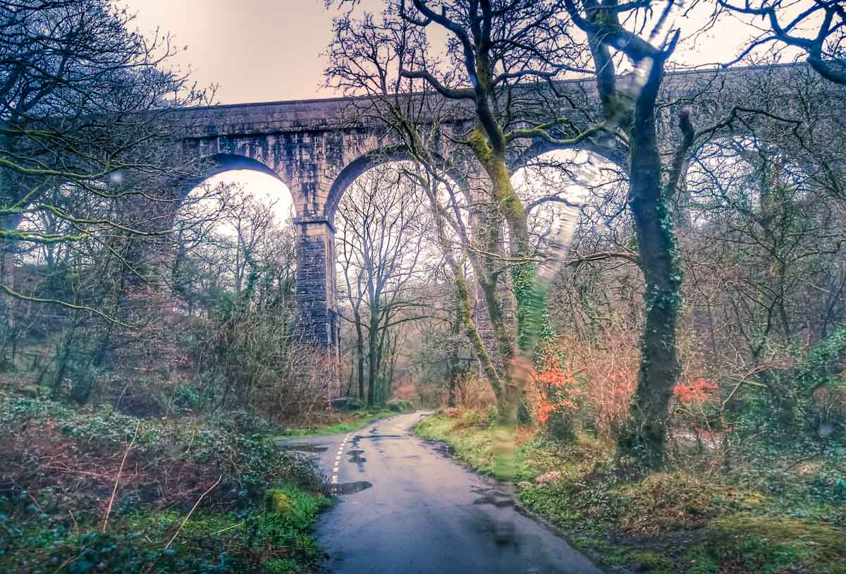 under-the-Treffry-Viaduct Luxulyan Valley Walk, Cornwall – Industrial Heritage and Natural Beauty